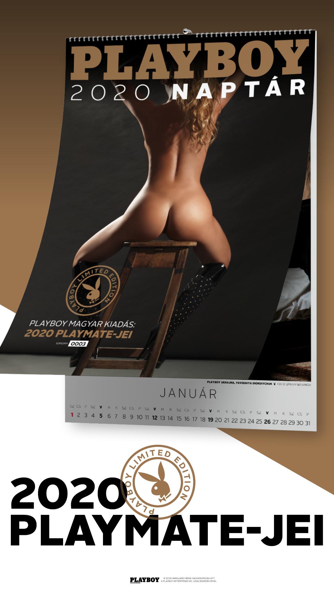 1080x1920_A2_Playboy_Calendar_2020_banner